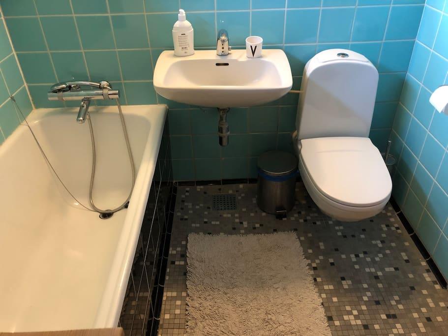 Toilet med badekar og brusekabine