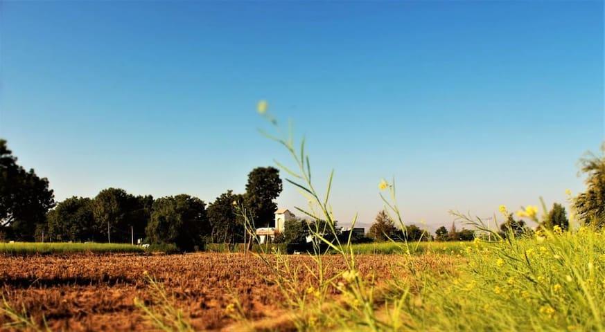 Eco friendly farmstay