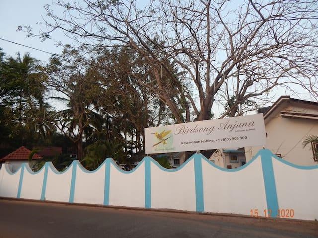 Birdsong, Anjuna- Studio XL-4 Garden View