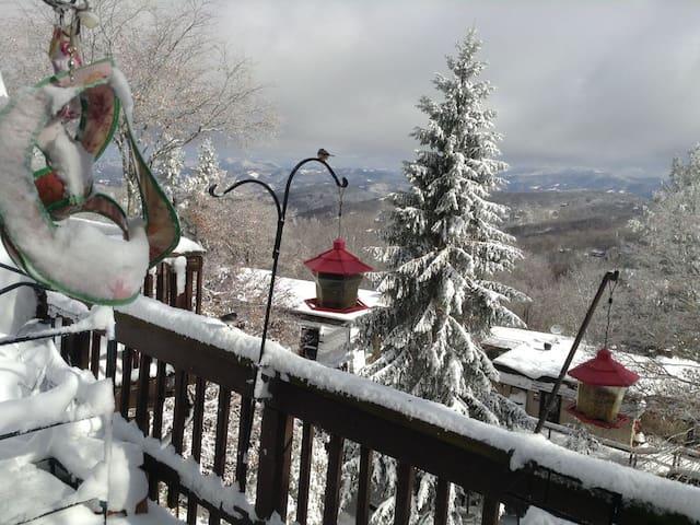 Winter wonderland on your back porch!