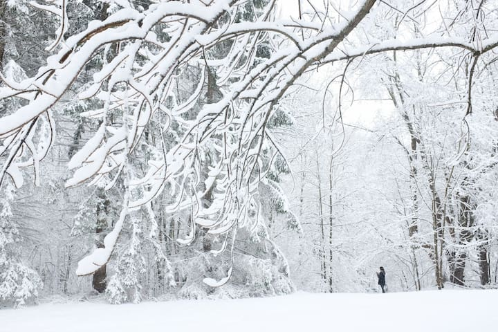 Stony Clove: Catskills/Hunter Mountain Getaway - Lanesville - Casa