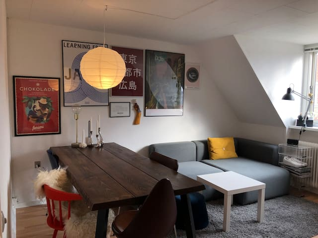 LOVELY APPARTMENT IN THE HEART OF COPENHAGEN
