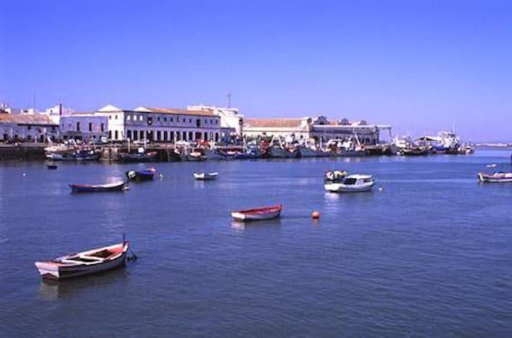 Magnificent penthouse next to the estuary of Isla - Isla Cristina - Jiné