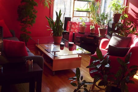Beau logement ensoleillé, secteur résidentiel - Montreal