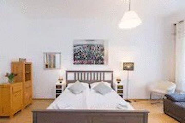 3 Bed Room Apartment Stepanska