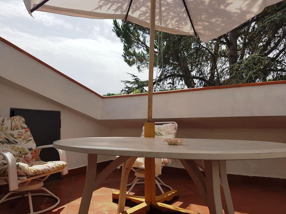 Terrace of Living Room