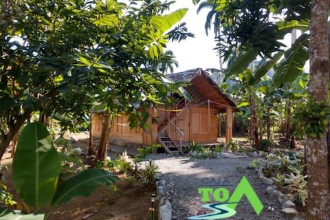 Rio Duaba Cabin in CASA TOA