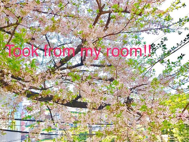 NEW OPEN!! 3min from JR Otsuka sta. Up to 6ppl ;) - Toshima-ku - Apartamento