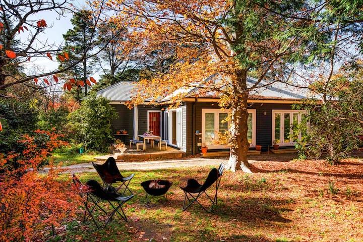 Charming Mountain Cottage -pet friendly