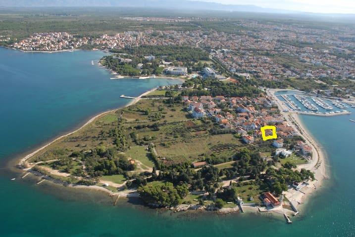 Zadar, Studio Graciela S 1