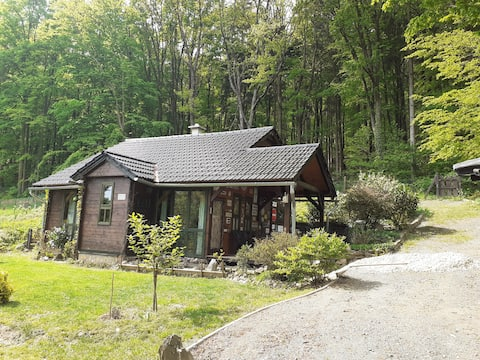 Cosy wooden cottage near the forest
