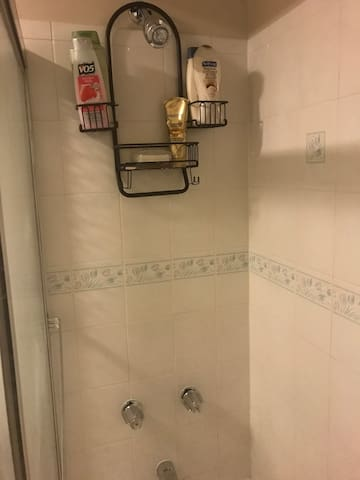 Private Bath& Large Bedroom Close to OHare Airport