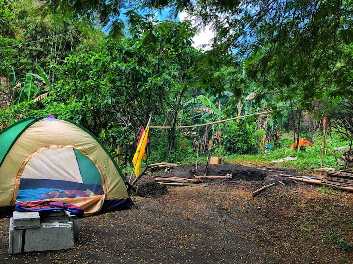 Forest Camping & Hiking @ My Camp Hill Antipolo