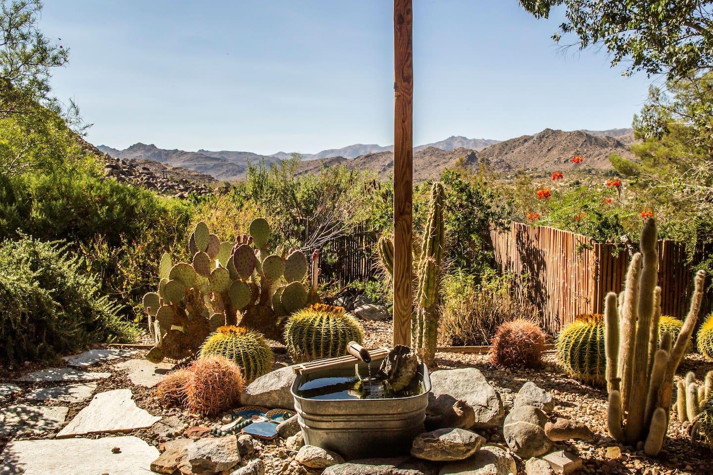 Joshua Tree Gardens - Houses for Rent in Joshua Tree, California ...