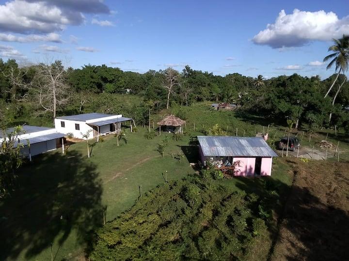FINCA JUANA VALDES -  autentico campo dominicano.