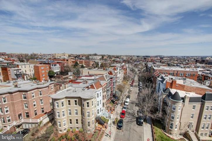 Sunny Condo Boutique in the heart of DC!