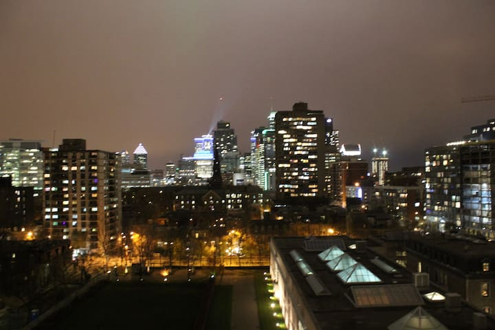 Wonderful View of Montreal Skyline!/2 bedroom Apt!