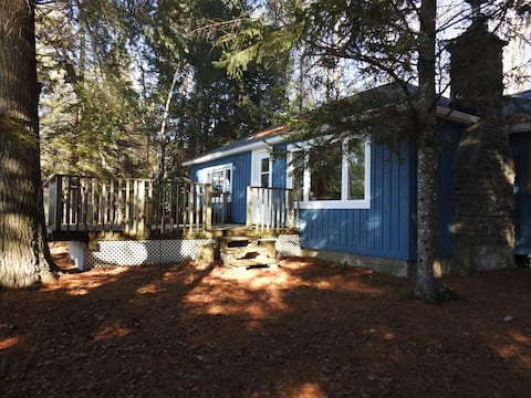 New to Airbnb!  Cozy Cabin on Oxtoungue Lake!