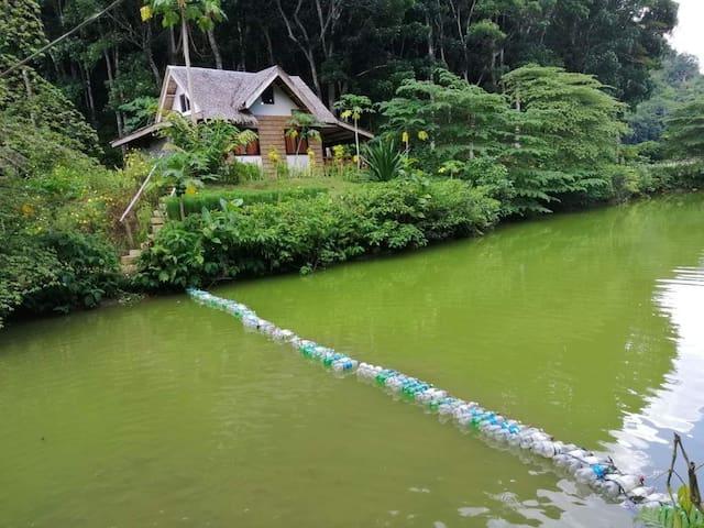 Duangon Eco Farm & Resort Bilar Bohol