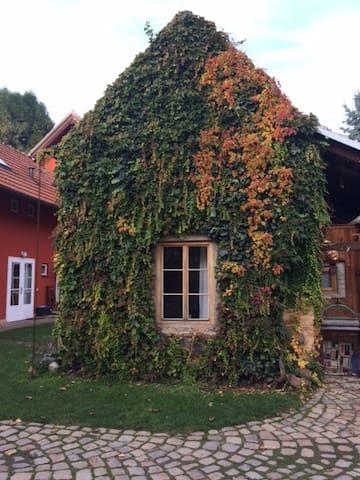 Small house in a garden - Prague - House