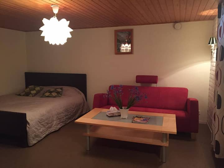 Room w/Kingsized bed. Near the City and University
