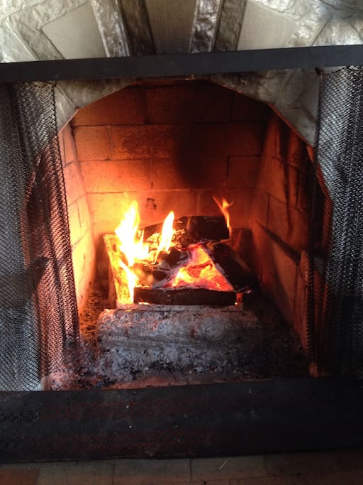 Fireplace and wood available