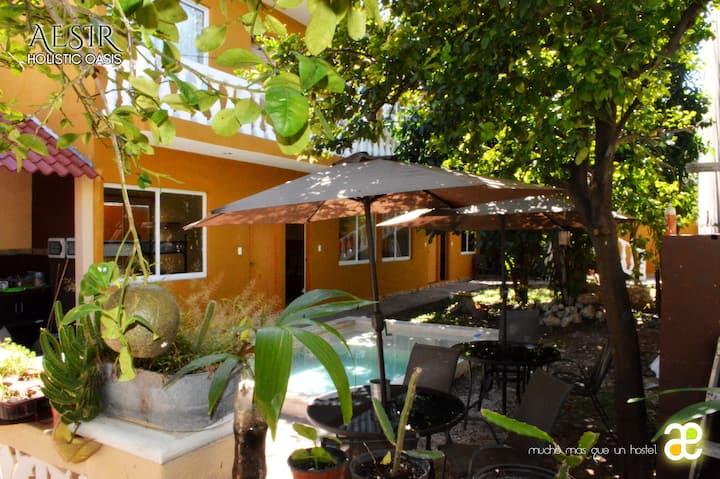 Aesir Hostel + (Hab privada)