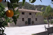 County house with apartments surrounded in orange- and lemon trees.