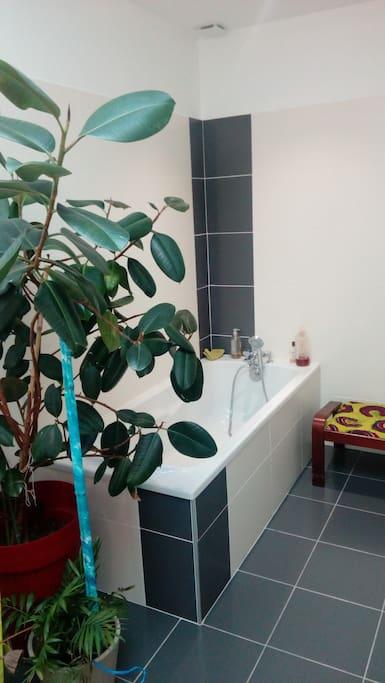 salle de bain avec baignoire + douche douche