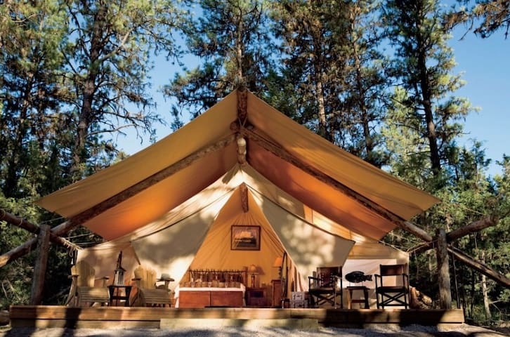 COMING SOON! Canopy Ridge Luxury Tent Cabins