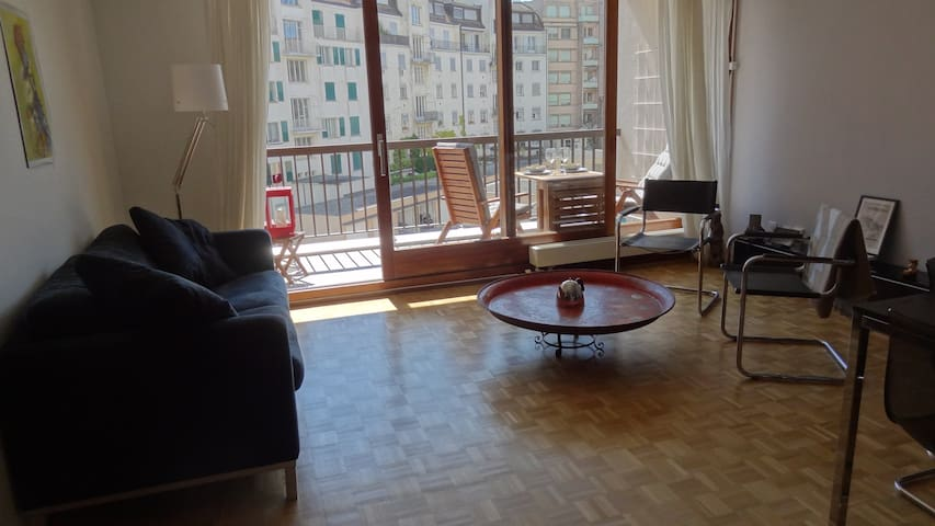 Beautiful bright & cozy apartment next to the lake - Cenevre - Daire