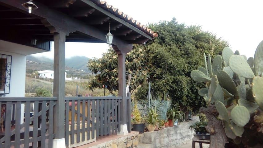 FINCA EL TUNO - Güímar - Dom