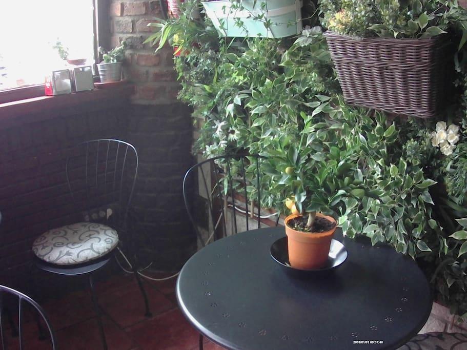detalle de mesa en zona de cafetería bar para el desayuno se sirve gratuitamente para todos nuestros clientes de Airbnb