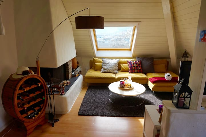 Lovely and cozy apartment near Zurich center - Zürich - Apartment