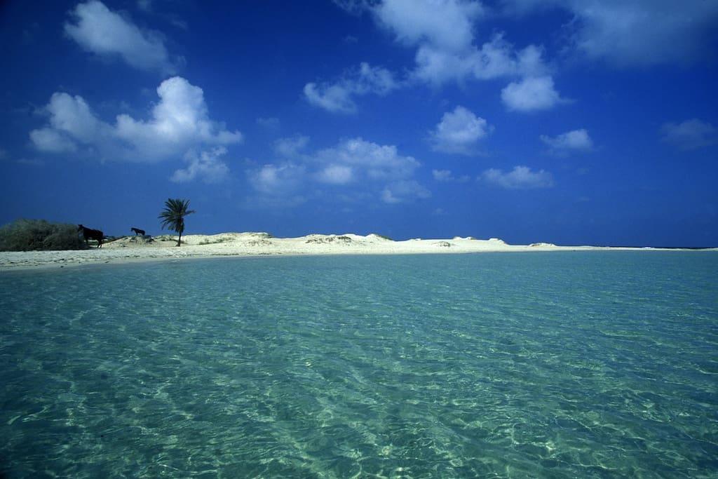 Les plus belles plages de sable fin sont à 9 minutes du Menzel Marhaba.
