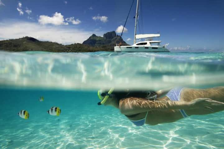 Live in a superb catamaran  Caribbean - Martinique