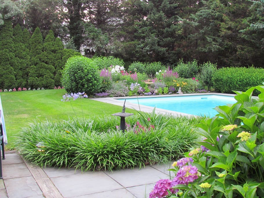 Backyard landscaping,pool, and patio.
