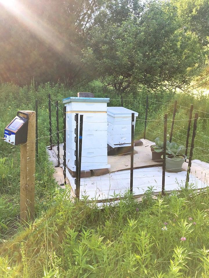Apple Acres Farm apiary