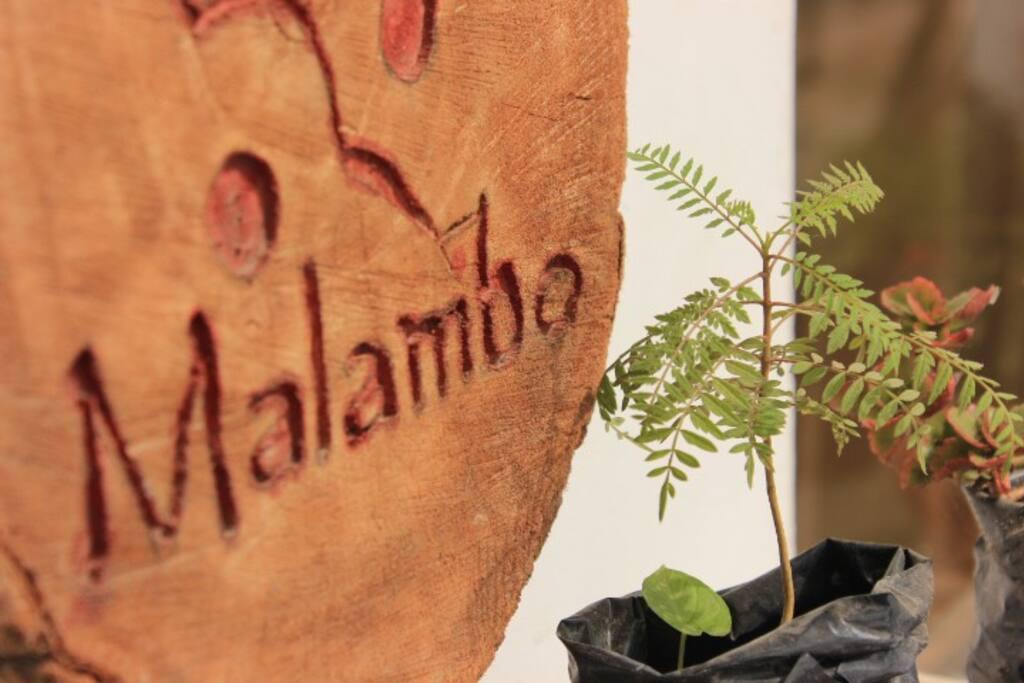 malambo es el nmbre del barrio afroperuana dnde empezamos un proceso de cambio