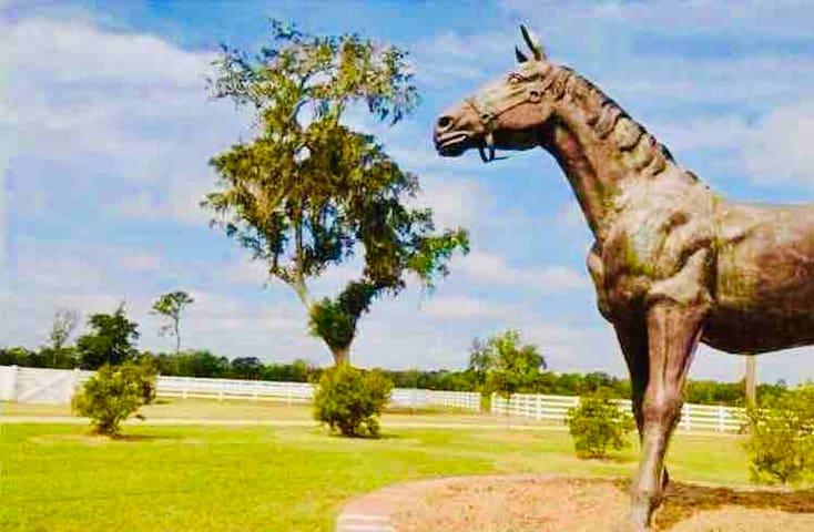 1bedroom Cottage 3 beds Horse Farm near Charleston