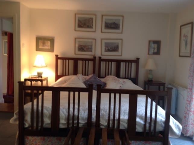 Twin bedroom with shared bathroom - York - Bed & Breakfast