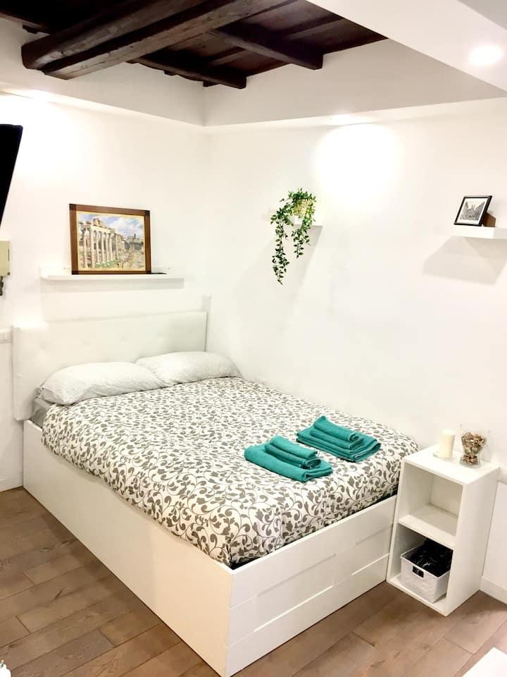 delizioso miniappartamento rione Monti