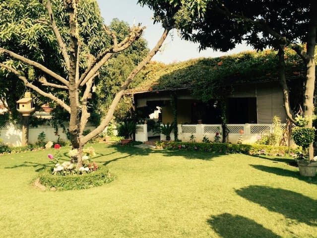 Pink city with Touch of Nature - Jaipur - House