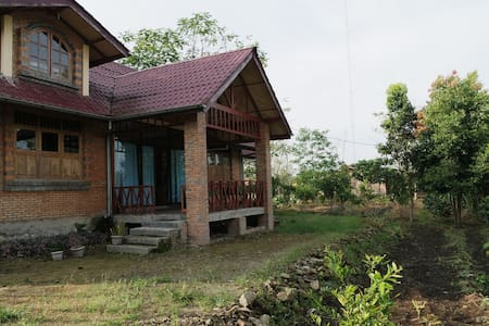 stay at the middle of coffee farm - Sidikalang