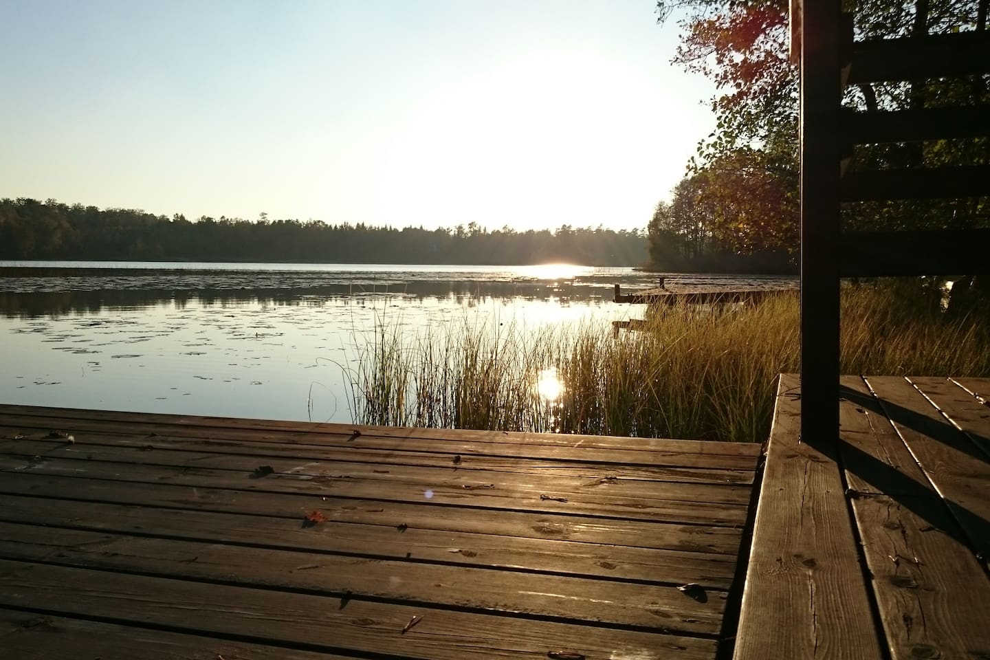 View over the lake in Autumn!