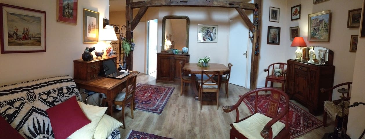 LE LOGIS DE MARY - Loches - Appartement