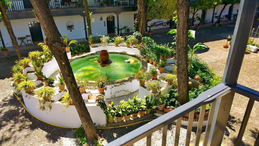Corral del Conde - VFT/SE/00796 - Seville - Apartment