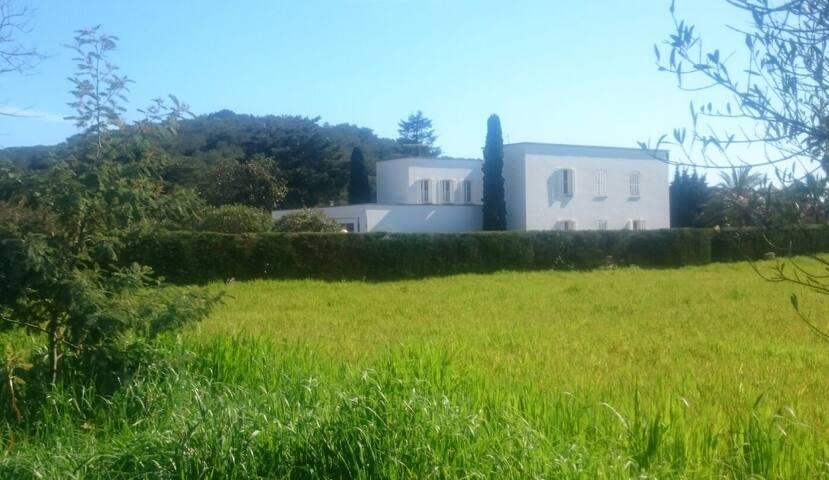 GALLO COLORAO - Mont-ras - Bed & Breakfast