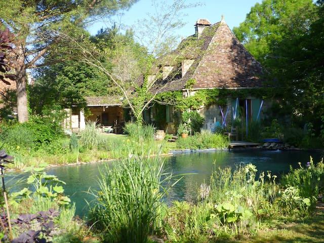 maison d'hôtes au bord de la rivière Dordogne - Bergerac - Dom