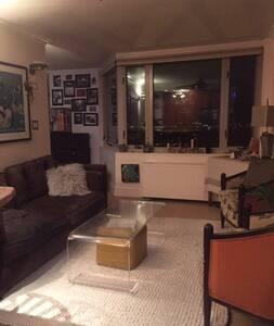 Luxury Penthouse 1BR apartment - Washington